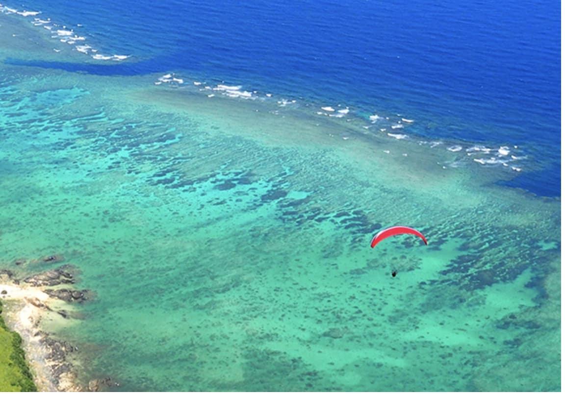 石垣島のアクティビティー パラグライダー うーまくぅ