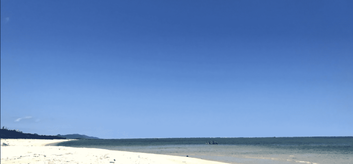 着陸が見られる海岸